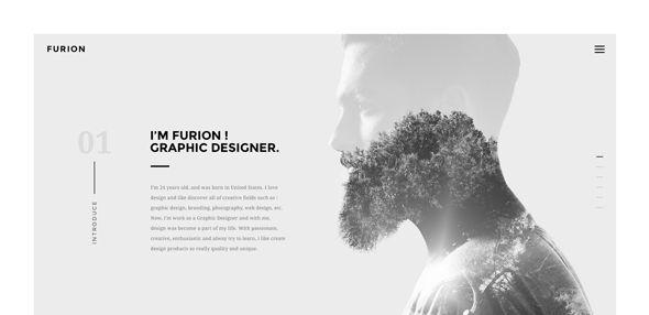 Furion---Freelancer-Portfolio