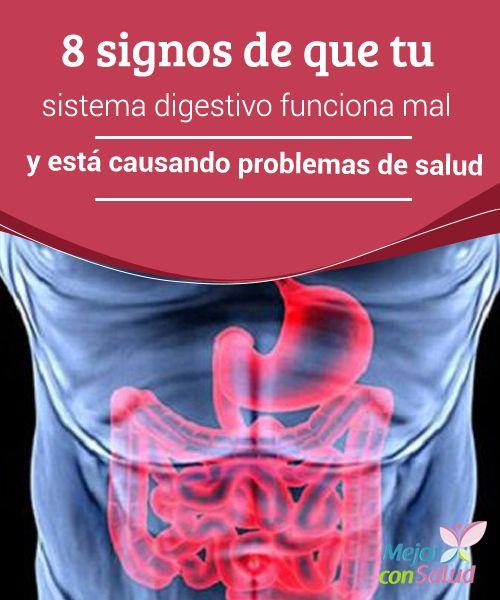 8 signos de que tu sistema digestivo funciona mal y está causando problemas de salud  Tu estómago es como un segundo cerebro. Puede parecerte una idea un poco descabellada, pero así es.