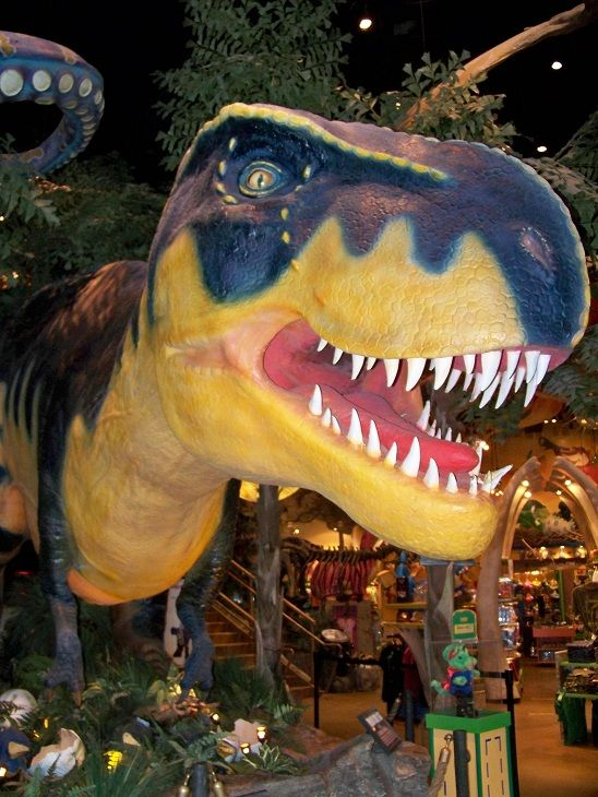 {T-Rex Cafe} Come eat with the dinosaurs -- They also have free behind-the-scenes tours for families and school groups!
