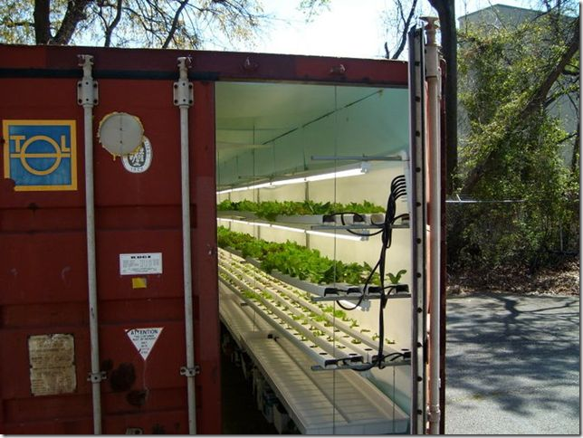 shipping container greenhouse | shipping container ...