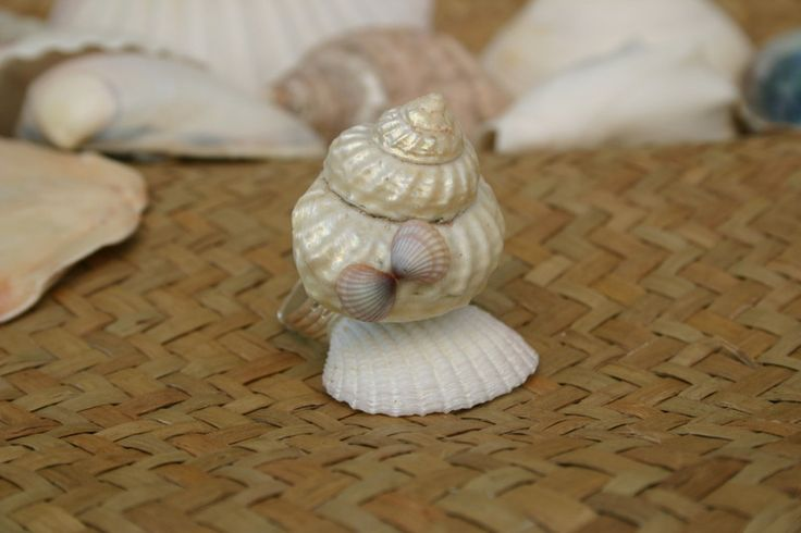 """Ivory Tower"" Shell Ring  from ShellCentric by DaWanda.com"