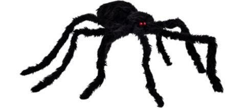 17 best images about halloween decor crafts on pinterest for Animated spider halloween decoration