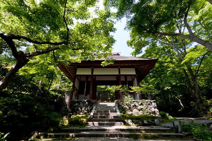 jyojyakouji temple  kyoto
