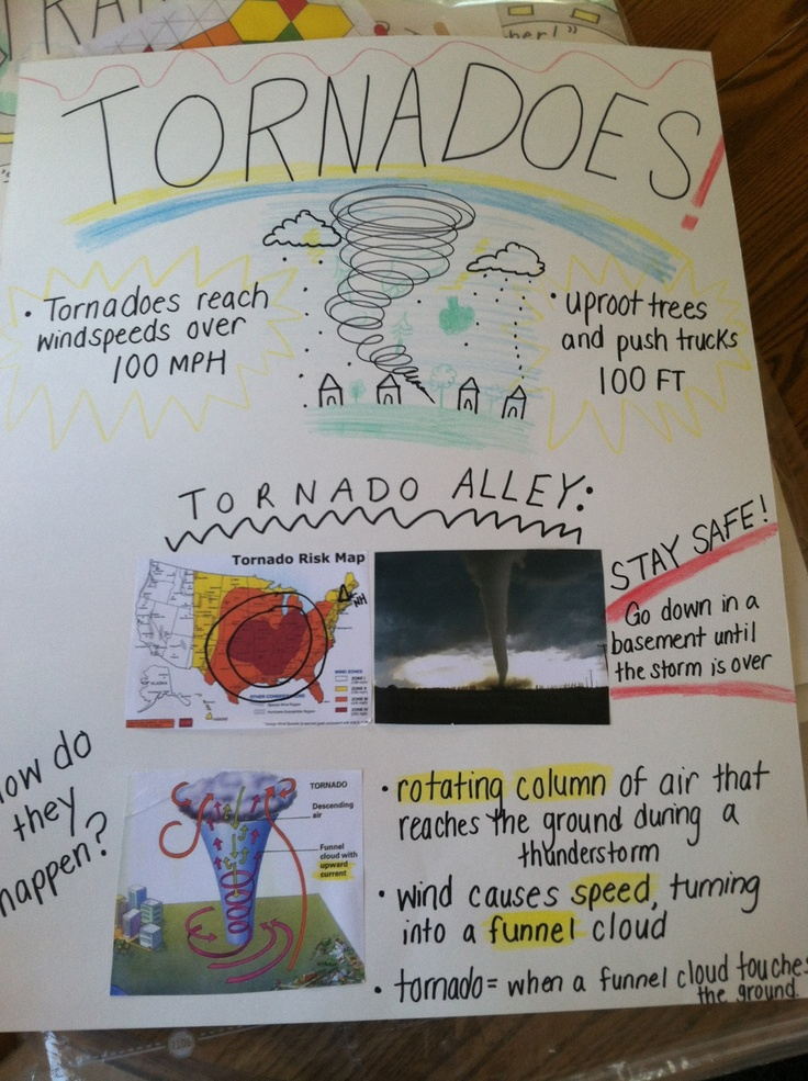 Tornado Diagram For Kids