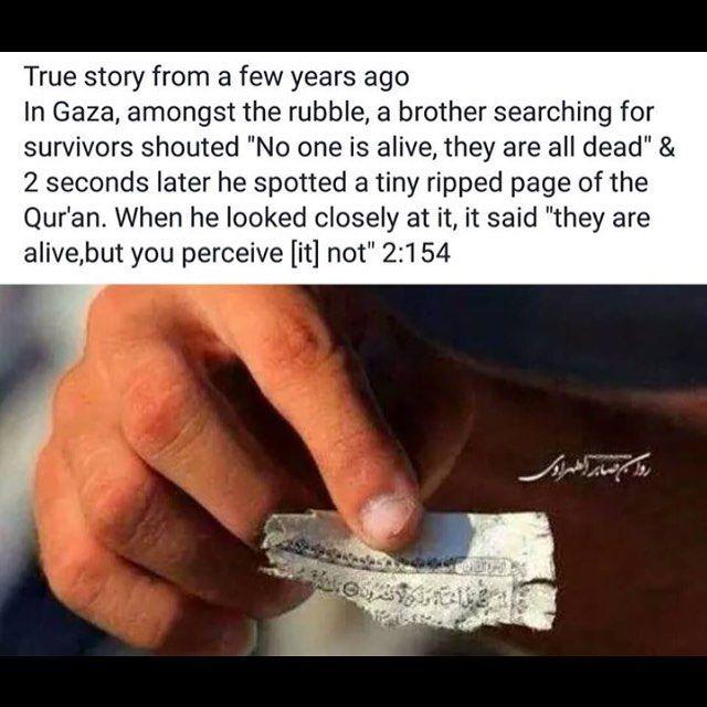 SubhanAllah!  #Quran #Allah #Alhamdulillah #SubhanAllah #muslim #muslimah #deen #dunya #jannah #alive #sunnah #oneUmmah #islam #instaislam