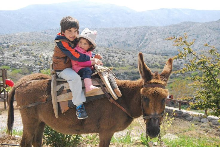 Ride on the donkey and make the tour of the blossomed plateau of Livadi!