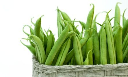 Grow Great Green Beans!