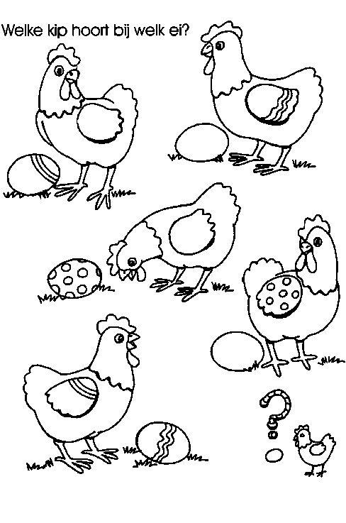 * Welke kip hoort bij welk ei?