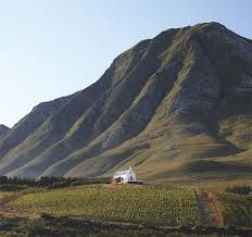 Ataraxia Wine Estate Hemel en aarde valley Hermanus : How awesome is this ? http://www.windsorhotel.co.za/