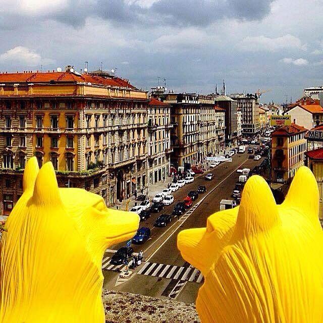 Cracking Art - Cracking Art @ Porta Venezia - Lupi Gialli a...