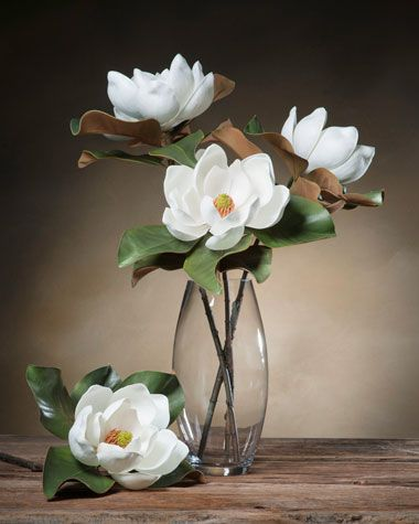 """This gorgeous large magnolia (7"""" diameter bloom) looks like it was just cut from the tree on a Southern Georgia Plantation. You won't find a silk magnolia that looks or feels more real than this one."""