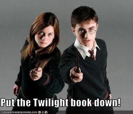 twilight movie vs book Twilight book vs movie there are inevitable changes when a book moves onto the big screen when the book is a cult phenomenon like stephenie meyer's twilight, die-hard fans are sure to talk about the differences between the book and the movie for weeks and months to come.