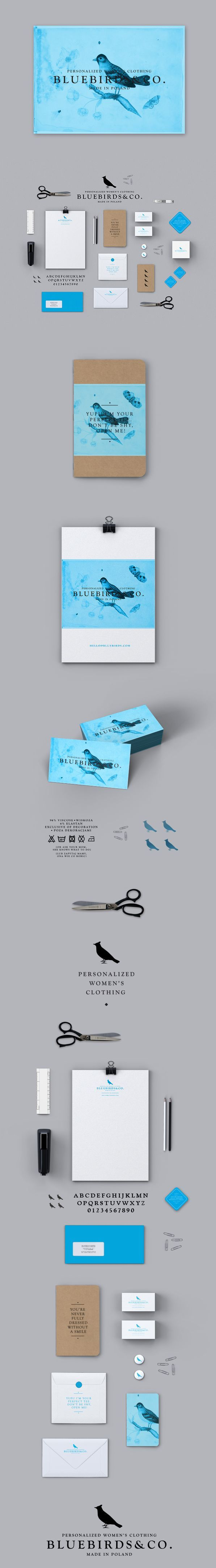 Strong, eye-catching color palette for this brand identity for Bluebirds & Co