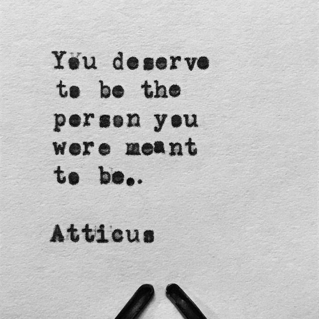 #atticuspoetry #atticus #poetry #poem #love #findyourwild @laurenholub