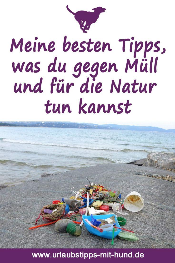 Plastik vermeiden, Strandsäuberungsaktionen (Beach clean-ups), Müll aufsammeln im Wald, plastikfreies Öko-Hundespielzeug, Hundefutter im Glas und viele weitere erprobte Tipps