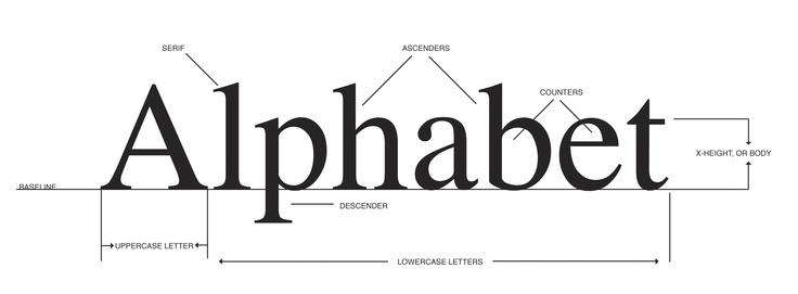 Typeface-Illustration.jpg 3,259×1,200 pixels