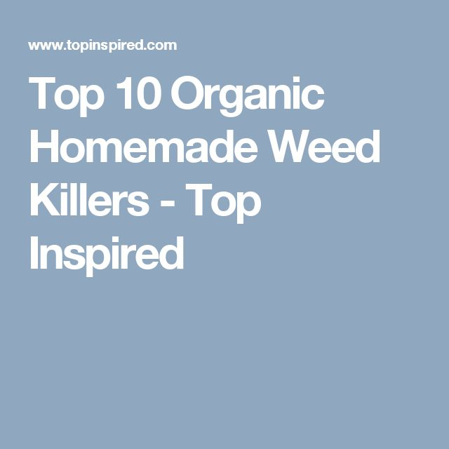 Top 10 Organic Homemade Weed Killers - Top Inspired