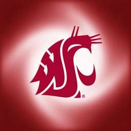 118 Best Cougar Country Images On Pinterest Washington