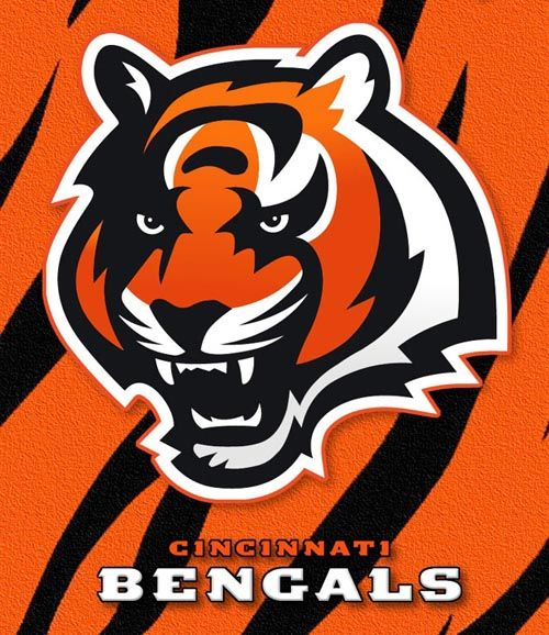 I like this team because the Bengals have so much potential to be great! Also their logo is a tiger and so is our football team.
