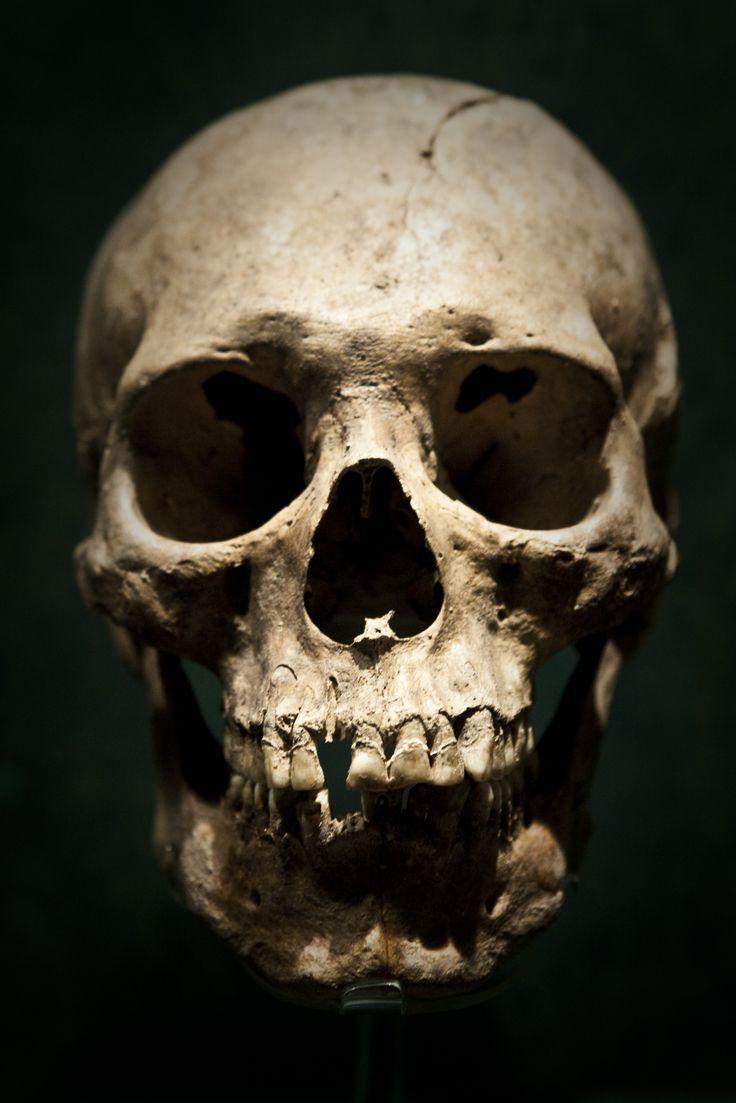 Human Jaw Tattoo: Found On Bing From Www.pinterest.com
