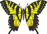 AllAboutButterflies.com    All About Butterflies is a comprehensive on-line hypertext book about butterflies. It is designed for students of all ages and levels of comprehension. It has an easy-to-use structure that allows readers to start at a basic level on each topic, and then to progress to much more advanced information as desired, simply by clicking on links.