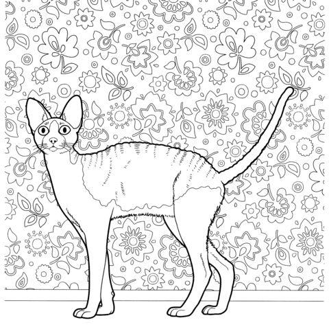 catgories chats coloriages gratuits imprimer avec une varit
