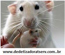 Blog do rato - Associação Brasileira de Franchising: O QUE É EFEITO BUMERANGUE?