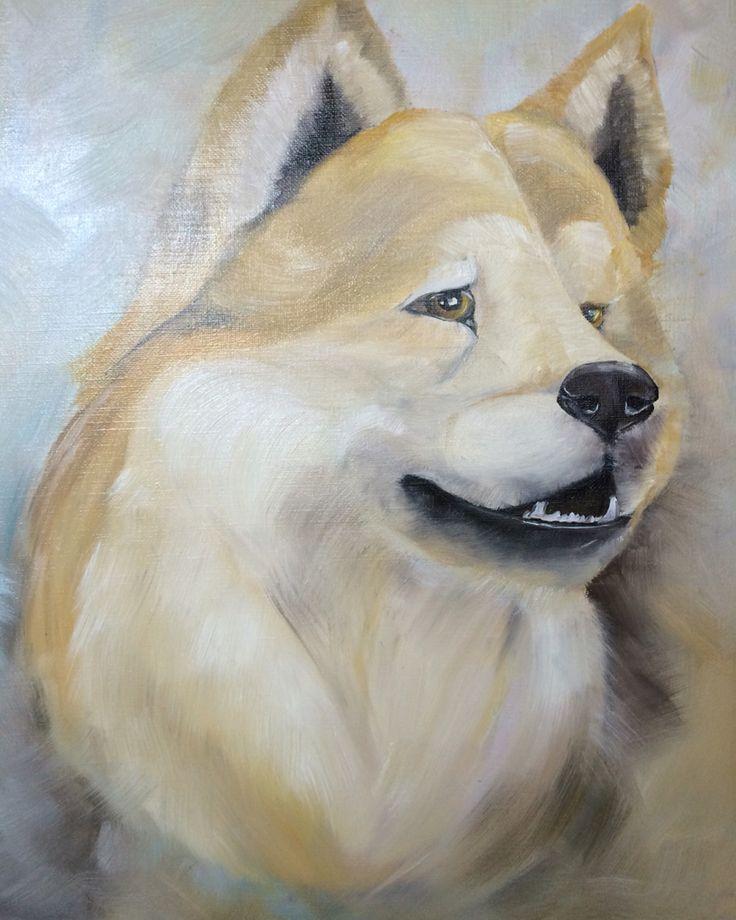 Shiba inu art oil canvas Сиба-ину Шиба-ину рисунок масло холст