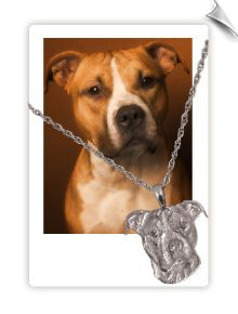 Pet Memorial Jewelry Pendants and Charms. This site has a lot of great things for your furry children.