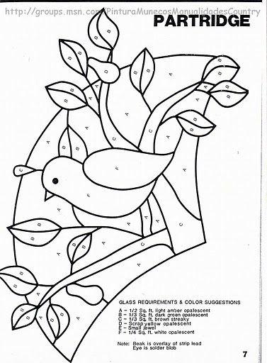 Bird  Pájaro en abanico