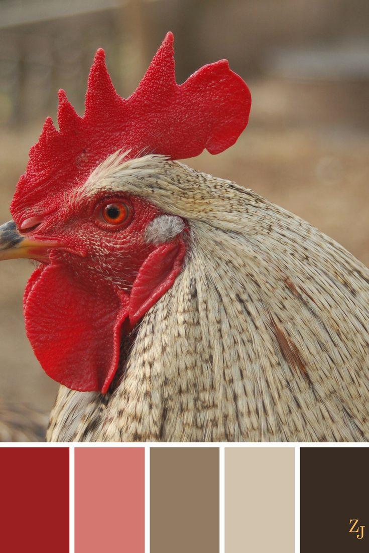 ZJ Colour Palette 590 #colourpalette #colourinspiration