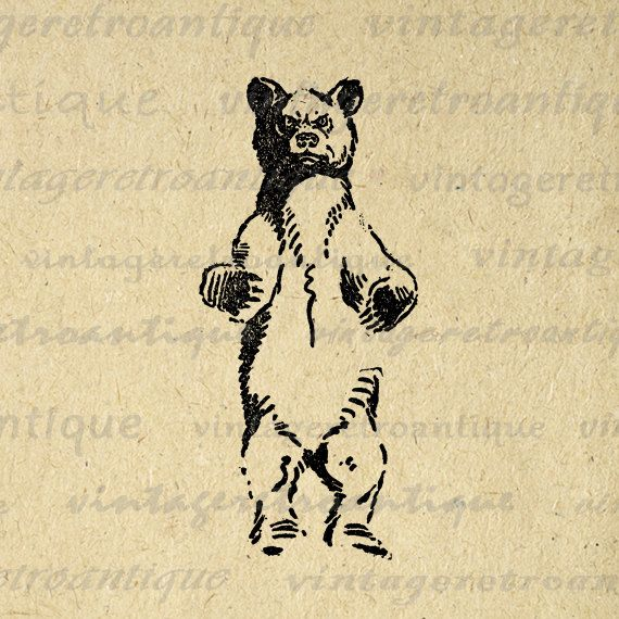 Printable Wild Bear Image Download Illustration Digital Graphic Antique Clip Art. Vintage high quality digital image. This printable high resolution digital image download is excellent for transfers, printing, tote bags, and other great uses. Real antique clip art. This digital graphic is high quality at 8½ x 11 inches large. Transparent background version included with all images.