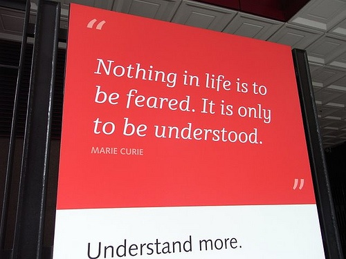 Nothing in life is to be feared. It is only to be understood (Marie Curie)
