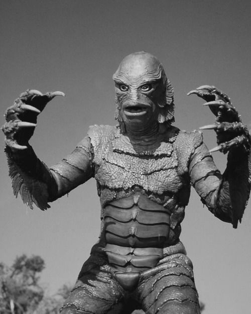 "I can tell you something about this place. The boys around here call it ""The Black Lagoon""; a paradise. Only they say nobody has ever come back to prove it.  Nestor Paiva as Lucas - Creature From the Black Lagoon"