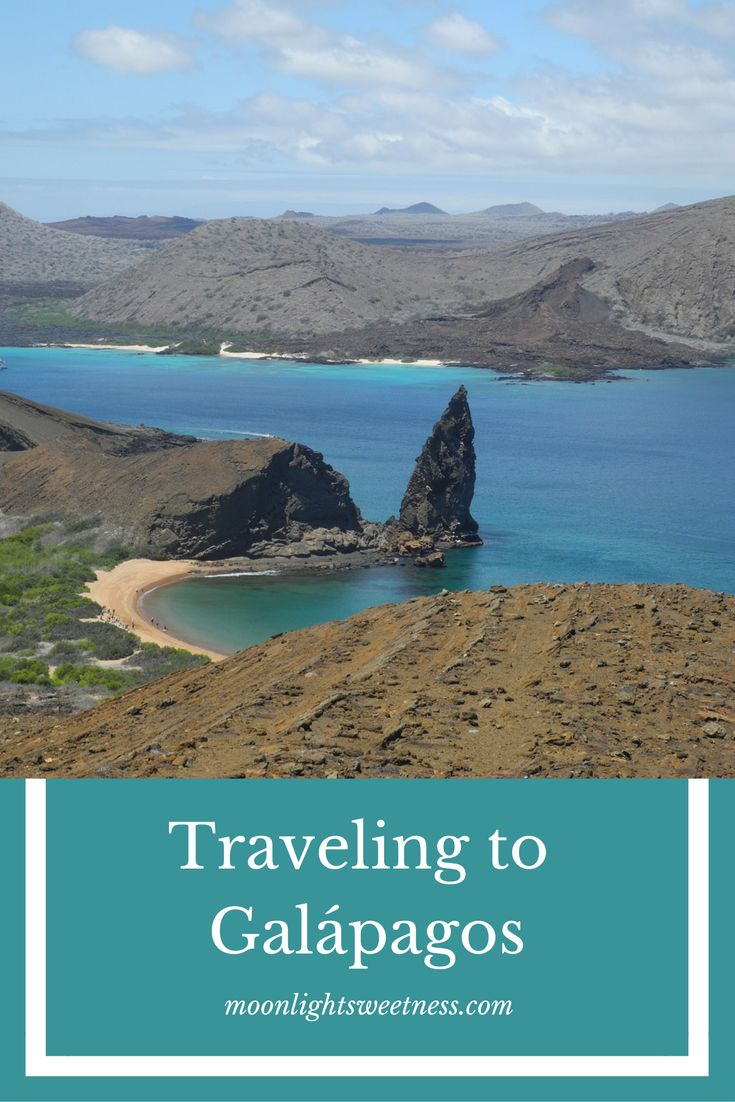 Traveling to Galapagos: Tips and advice for visiting Galápagos Islands, Ecuador. The animals you will most likely see, tours, hotels and the packing you need.