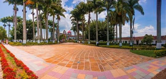 #GpeEnFotos @maurobucaro: 87 palmeras adornan el parque de Guadalupe Santander. #EnMiColombia #FelizDomingo