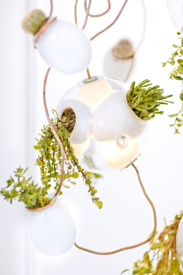 omer arbel office designrulz 14. mimicking a tangle of vines the 38 series planter chandelier is new lighting concept from omer arbel canadian design firm bocci office designrulz 14