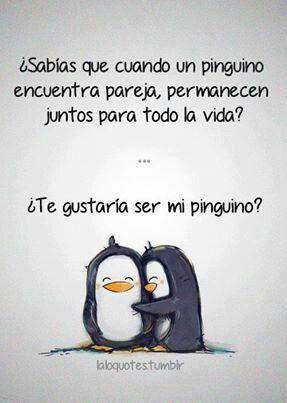 ¿ Te gustaría ser mi pingüino?