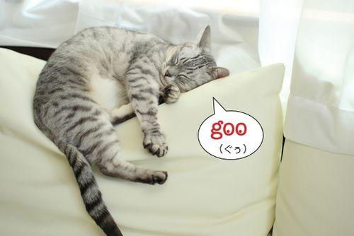 日本人の平均睡眠時間は各国の中でも短いようです。 これを受けてか、「昼寝マスト」な会社があるのには驚きですね!  昼寝制度を導入、効率化図る企業 - goo ニュース http://bit.ly/1nXGfHh http://ift.tt/1pbeSH0
