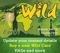 Wild Card - Go Wild in Nature