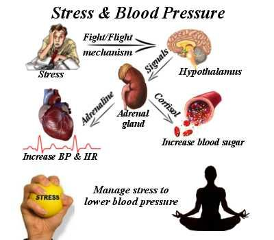 stress and blood pressure relationship