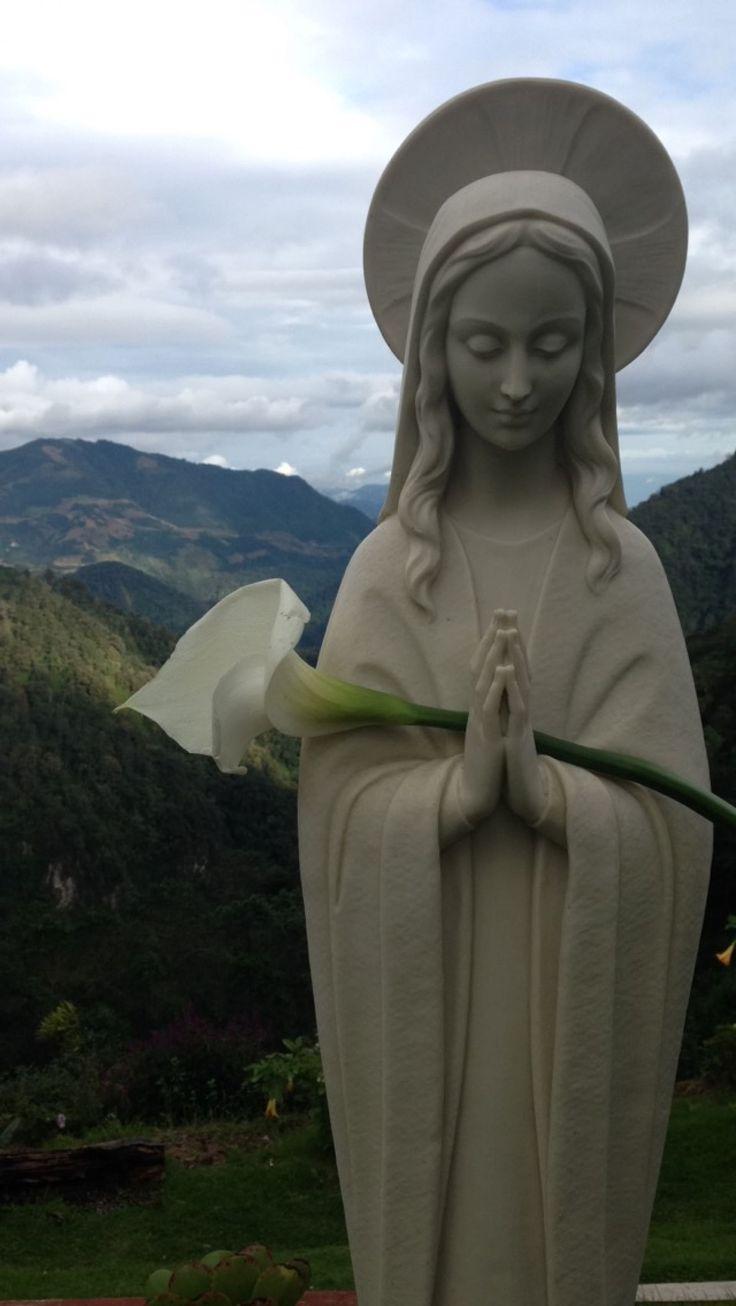 Imagen/fotografía católica de alta resolución etiquetada como: virgen,maria,madre. ¡Descárgala gratis en Cathopic!