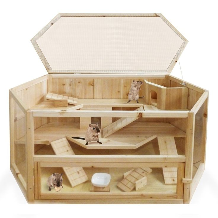 Wooden xxl rodent villa hamster cage hut mouse gerbil for Buy guinea pig cage