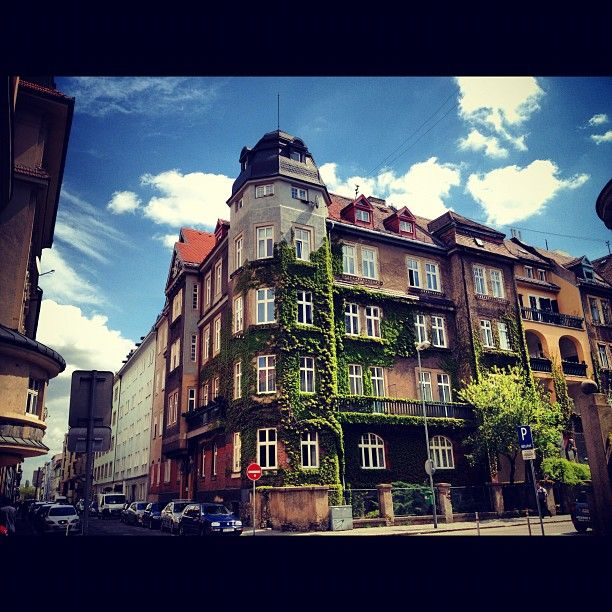 A green house in our neighborhood in #Bratislava city. Great picture! (by katixx)