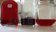 Damson gin (blackberry & apple gin too) - River cottage recipe