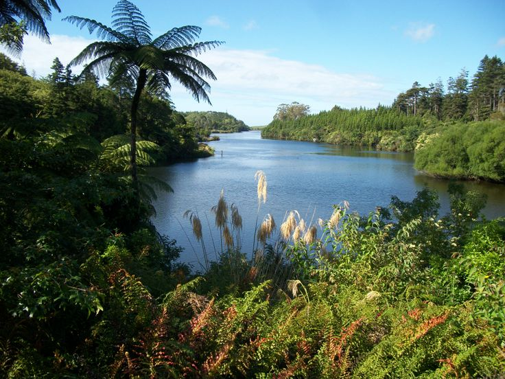We had a lovely time walking around Lake Mangamahoe in New Plymouth here in NZ