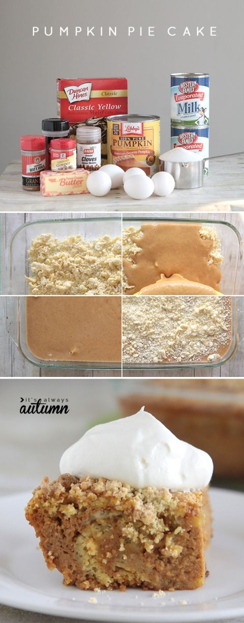 easy pumpkin pie cake recipe: this is even better than pumpkin pie! great for holiday dinners.