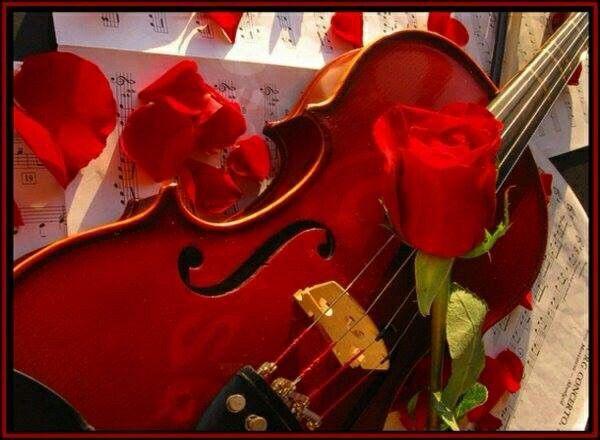 🌹 ════ღஐ✿🌹Ƹ̵̡Ӝ̵̨̄Ʒ🌹✿ஐღ════🌹✿🌹  Deus é aquele que rege a orquestra da vida. O que faz com que a melodia seja mais sublime e perfeita, aos ouvidos daqueles que estão dispostos a ouvir sua voz.  ஐღAtaniel dos Santosஐღ