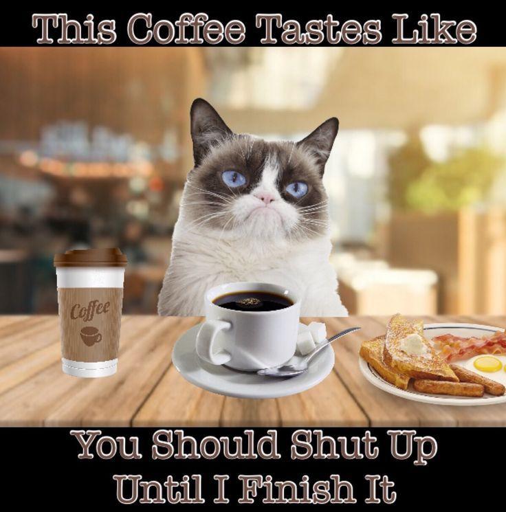 Unkleaboki Grumpy Cat Coffee Memes | Coffee humor, Grumpy cat humor, Coffee meme