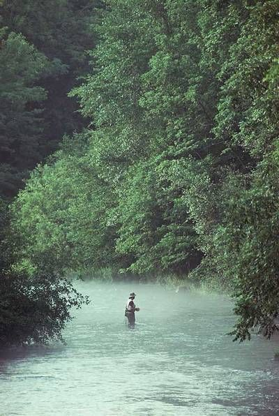 1000 images about reel it in on pinterest fly fishing